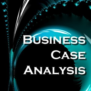 business plan case study analysis