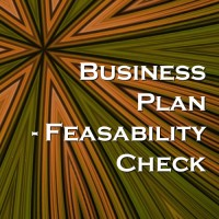 Business Plan - Feasibility Check