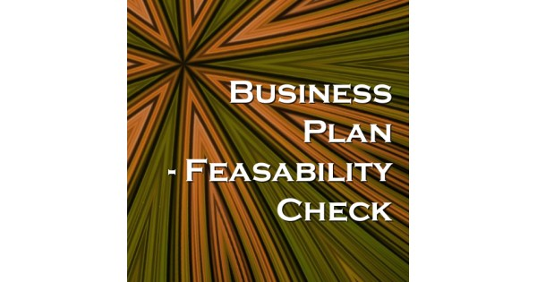 checkers business plan