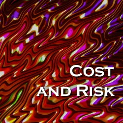 Cost and Risk (10)
