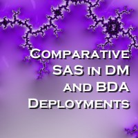 Comparative SAS in DM and BDA Deployments