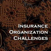 Insurance Organization Challenges - Query