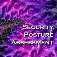 Security Posture Assessment