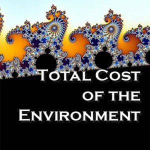 Total Cost of the Environment (TCE)