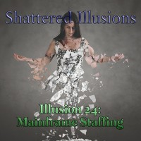 Shattered Illusions - MF Staffing