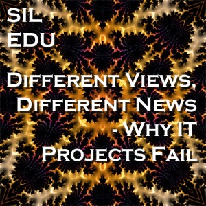 Different Views, Different News – Why IT Projects Fail