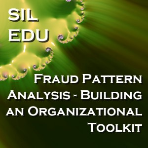 Fraud Pattern Analysis - Building an Organizational Toolkit