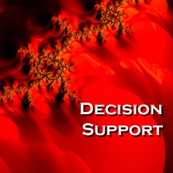 Decision Support (3)